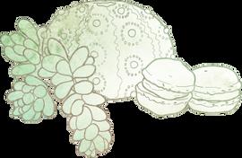 Vector Illustration - Macaron