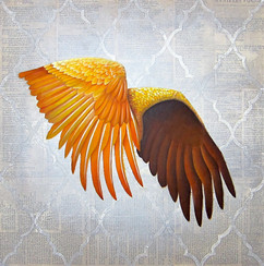 Wings collage orange