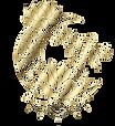 Logotipo_-_L%C3%83%C2%B3tus_da_Lua_edite