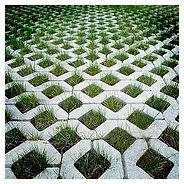 beautiful-grassy-pavers.jpg