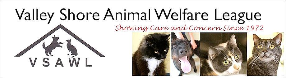 Valley Shore Animal Welfare League