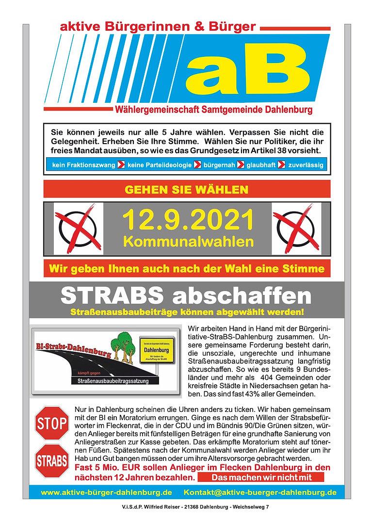 Themenflyer Strabs Paradigmenwechsel.jpg