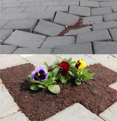 Sidewalk planters