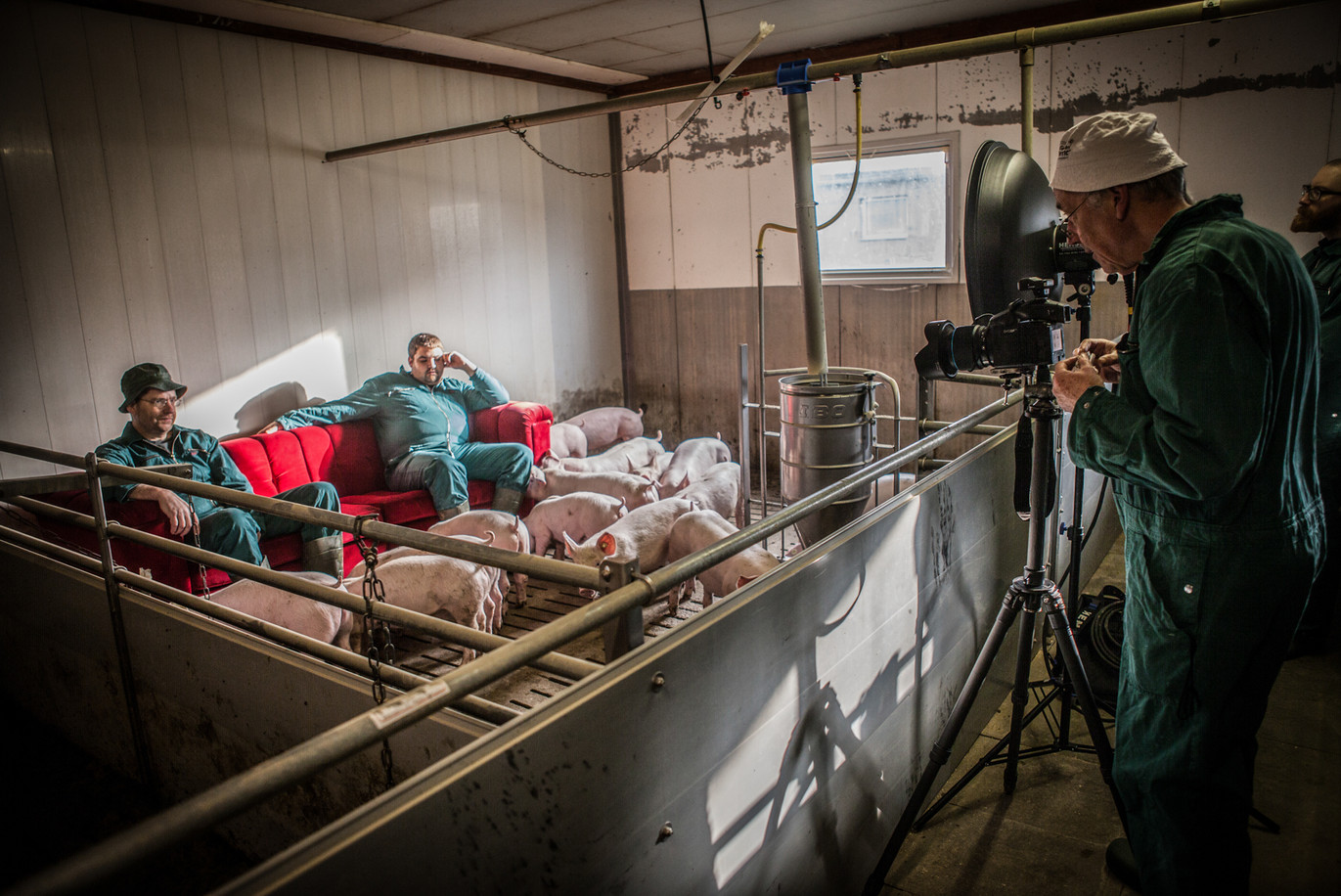 Schweineproduktion-51.jpg