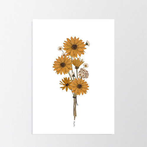 Vintage Daisy in White