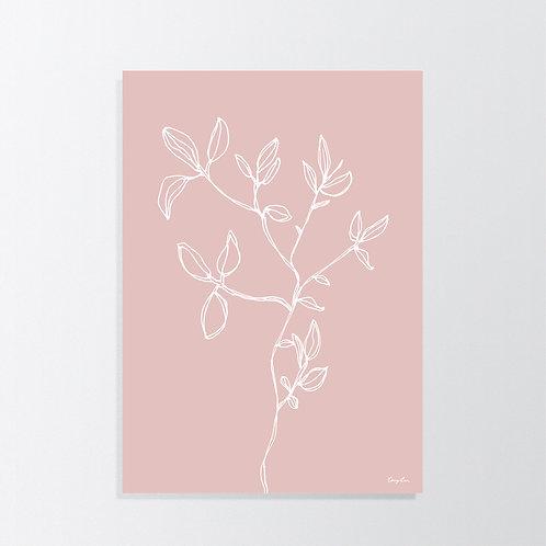 April in Lotus