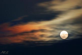 Surfing Moon ירח גולש