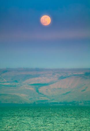 Orange Moon and Green sea