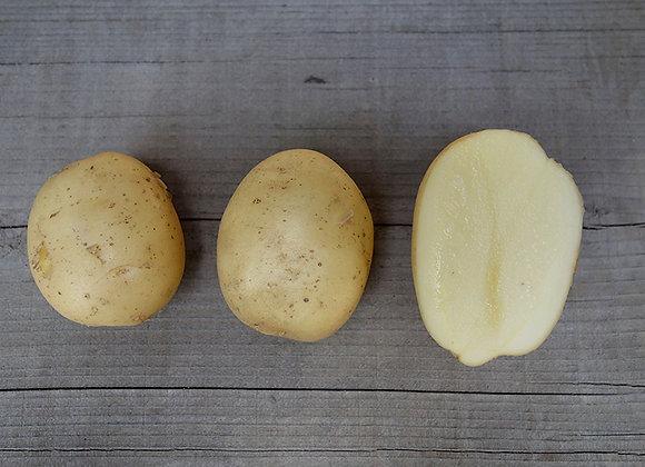 タワラワイス 5kg
