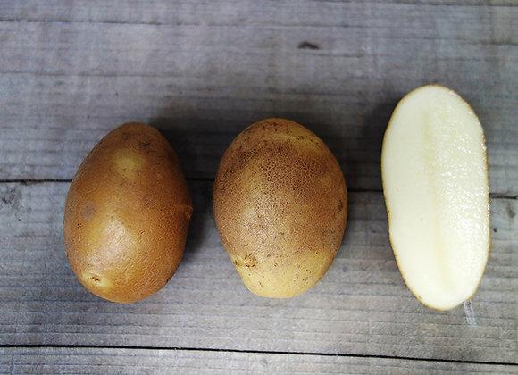 タワラ小判 5kg