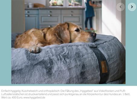 Das Hyggebed im Dogs-Magazin