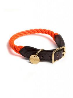 Hundehalsband Tauhalsband