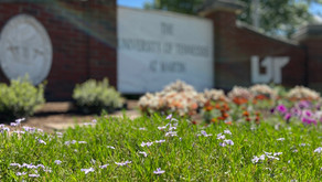 UTM class of 2020 honored in virtual commencement