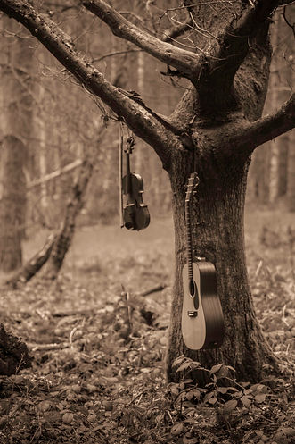 Morris & Watsons Instruments hanging from a tree