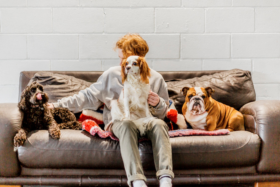 Dogs Life-20.jpg
