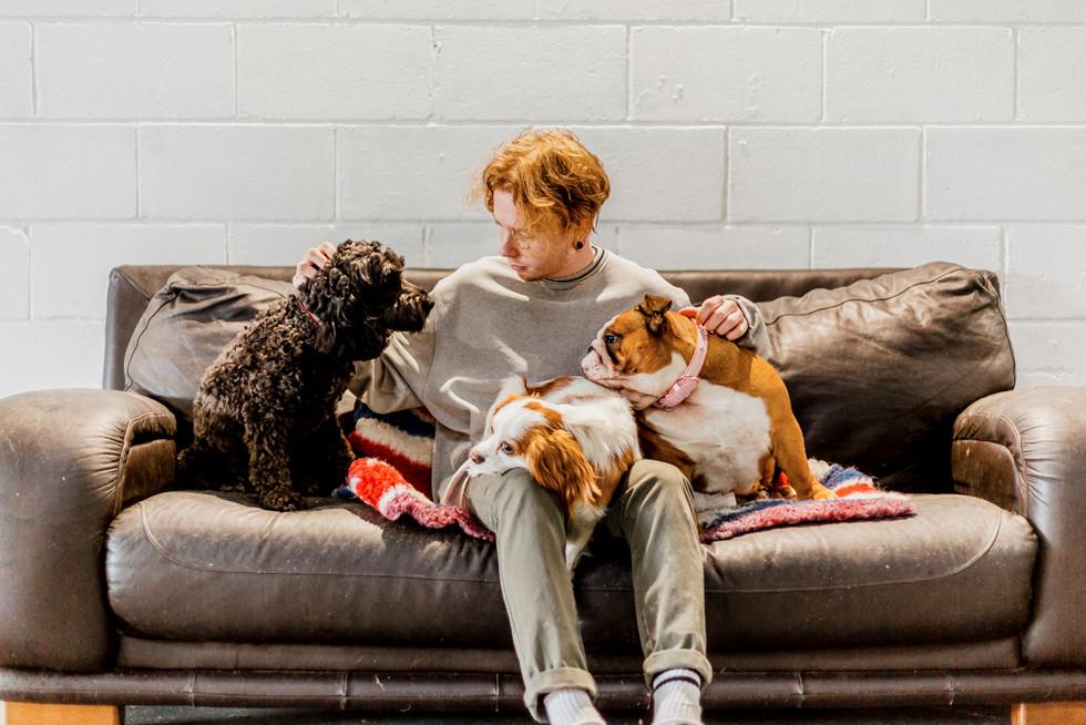 Dogs Life-21.jpg
