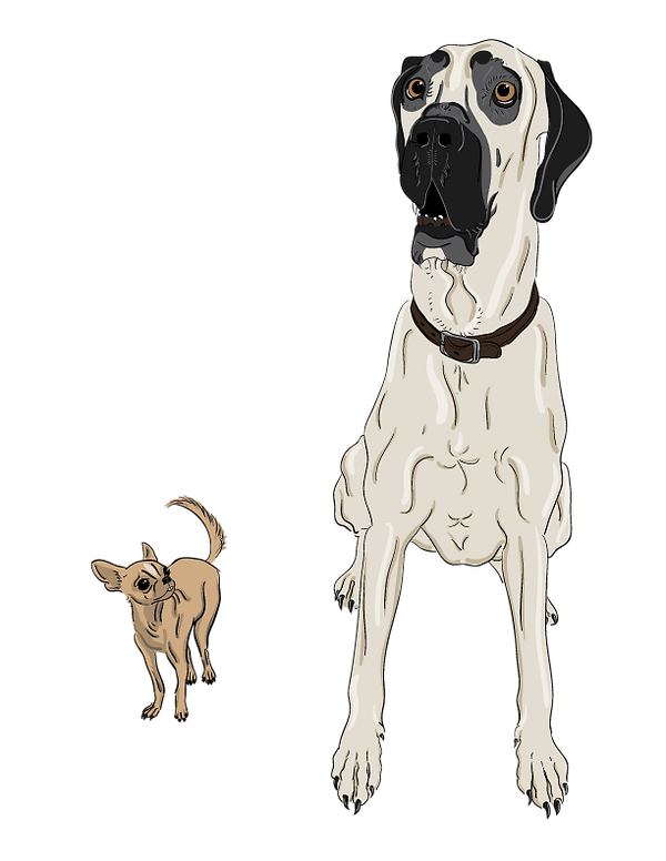 DOGGOS-transparent-bg.png