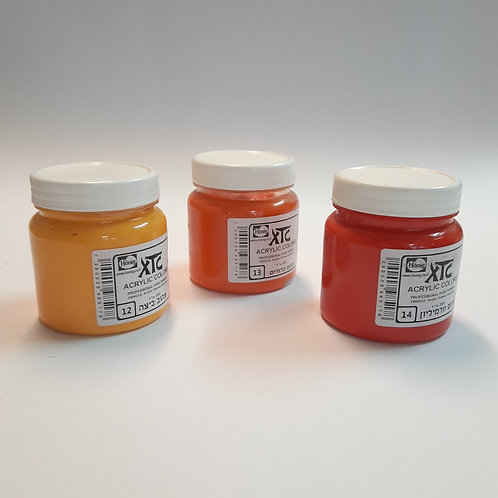 "XTC צבע אקרילי 220 מ""ל"