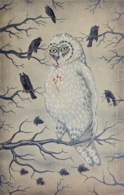 Owl vs. Crow