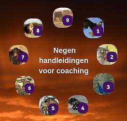 foto coaches basismodule_edited_edited.p