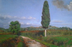 """Lone Cypress (II) """"Muddy Road"""""""