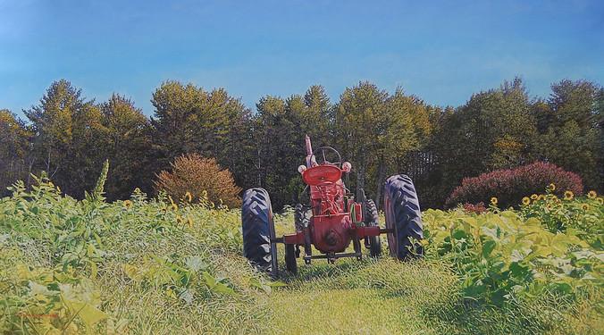 Tractors in the Pumpkin Patch