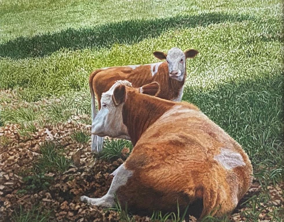 American Dairy
