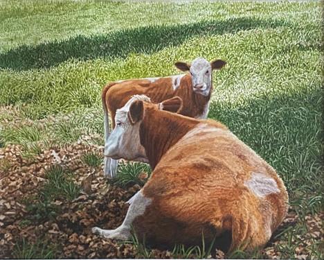 american dairy II.jpg
