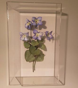 Long Spurred Lilies.jpg