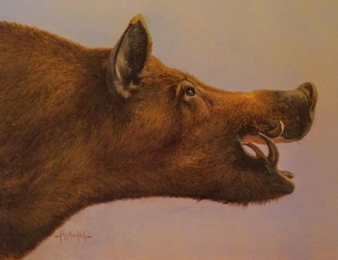 JMK-Boar Study.JPG