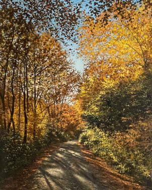 The Glory of Autumn