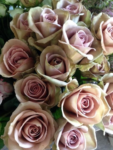 Amnesia Roses for Bridal Bouquet