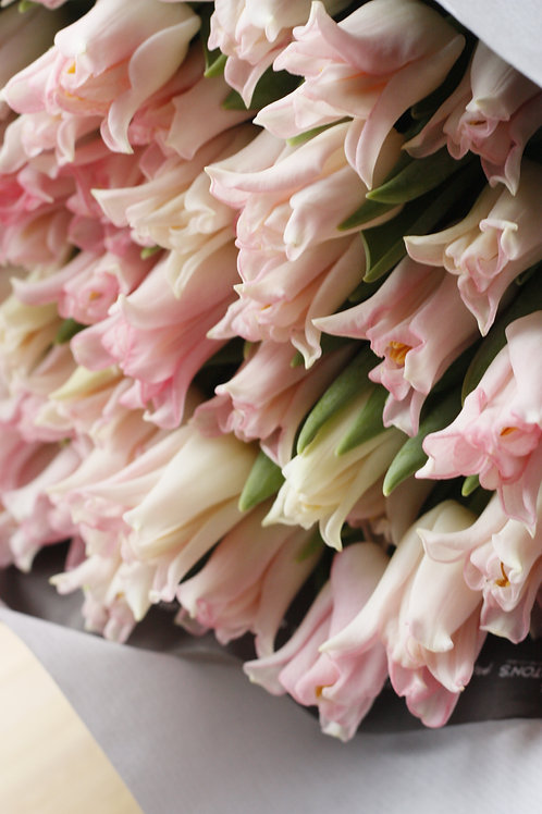 Every Day Tulips | Florists Choice