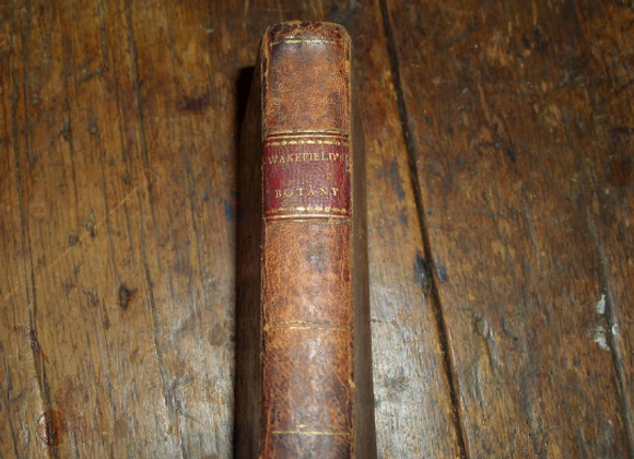 1811 An Introduction to Botany - Priscilla Wakefield - 18th Century Author