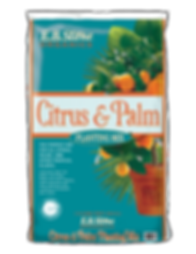 eb-stone-outdoor-soil-citrus-palm-planti