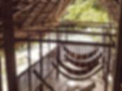IMG_4125_edited_edited.jpg