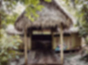 IMG_4126_edited.jpg