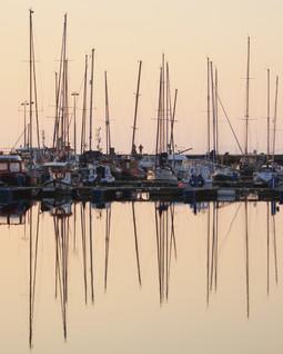 Reflection 006