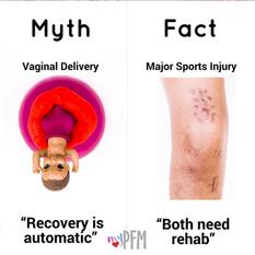 Pregnancy Myth & Fact
