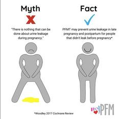Myth & Fact