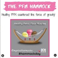 The PFM Hammock