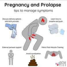 Pregnancy & Prolapse