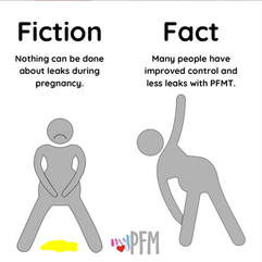 Fiction & Fact