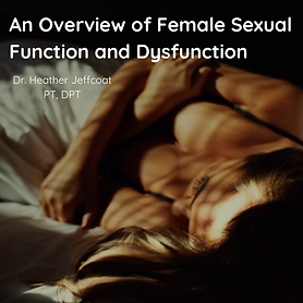 Copy of An Overview of Female Sexual Fun