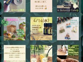 4/14(水) ボタニカル・アロマ・ワークショプ*参加者募集*