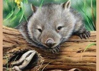 Roo Wombat Echidna Wildlife Art