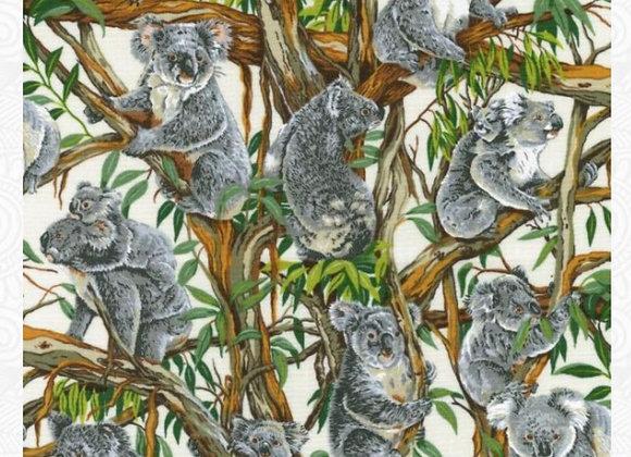 Aussie Koalas Cotton