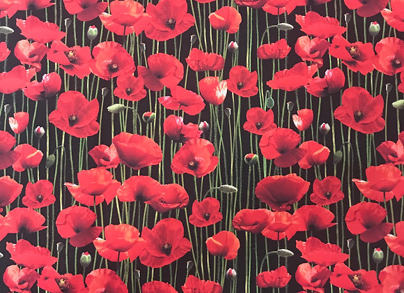 Poppy stems Remembering