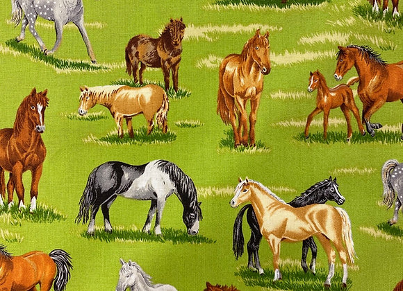 Horses in the country
