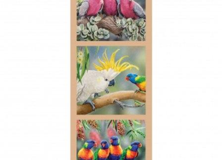 Birds Cockatoo Wildlife art